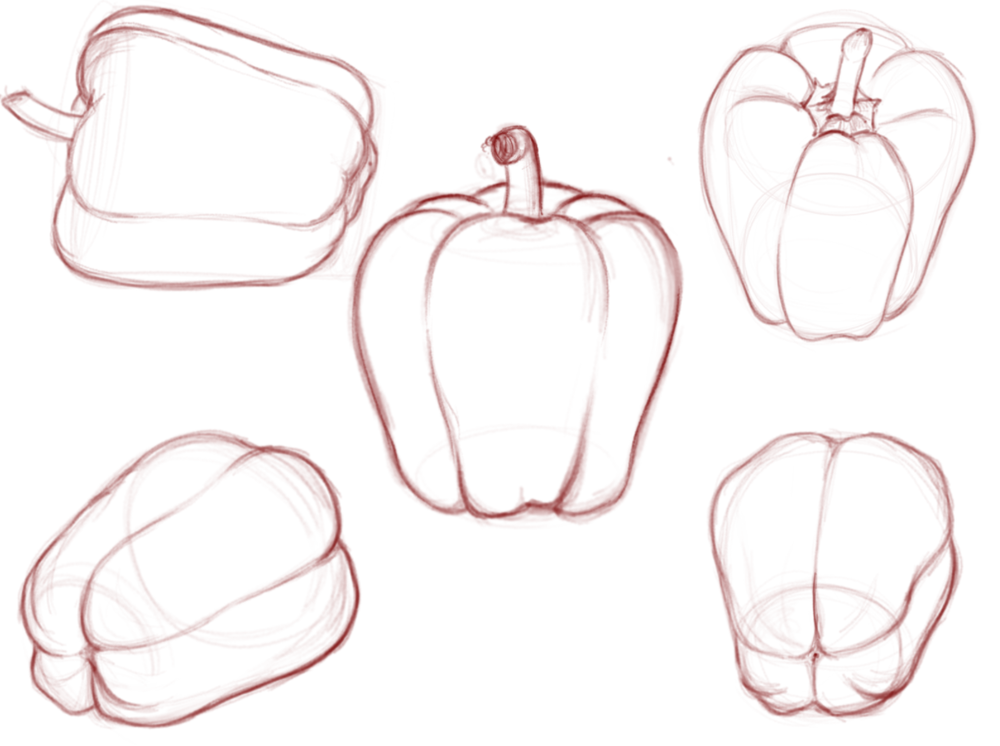 drawing of a pepper