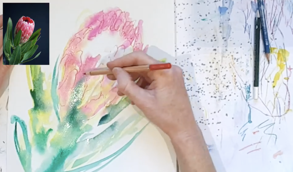 Skillshare instructor Catherine Jennifer Charnock demonstrates how to draw and paint a flower based on a photograph.