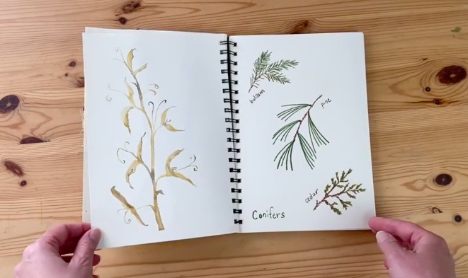 Use your crayons to draw common items from your favorite season.