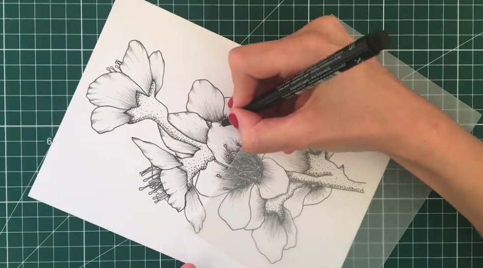 Moving from simple flowers and leaves to more complicated botanical designs can help to bring added detail to your line drawings, while maintaining the minimalism and simplicity that defines this style of art.
