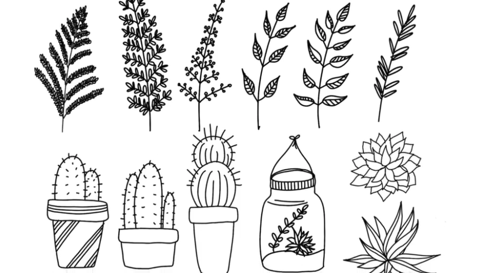 Botanical line art is one of the most commonly used thanks to its flexibility. Skillshare instructor Peggy Dean shows how easy it is to get started.