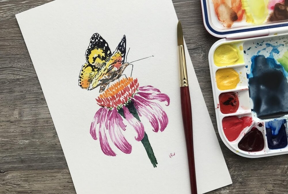 A side view of a butterfly on an echinacea flower by Skillshare instructor Rebecca Humphreys.