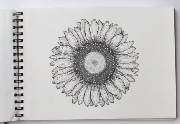 Don't be intimidated—this detailed sunflower is easier than it looks to draw!
