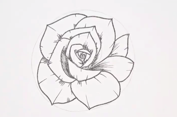 Any budding artist will be able to draw this simple rose.