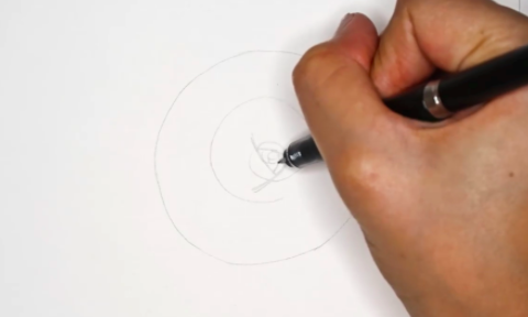 As with other flowers, rose drawings are based on a series of lines and circles.