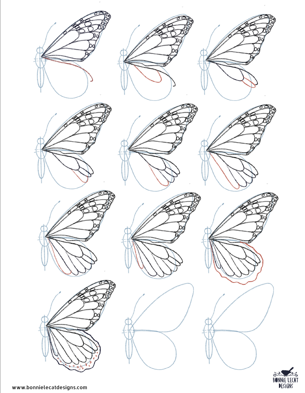 Once you have done the top and bottom lines, you can start adding the spots on the wings.