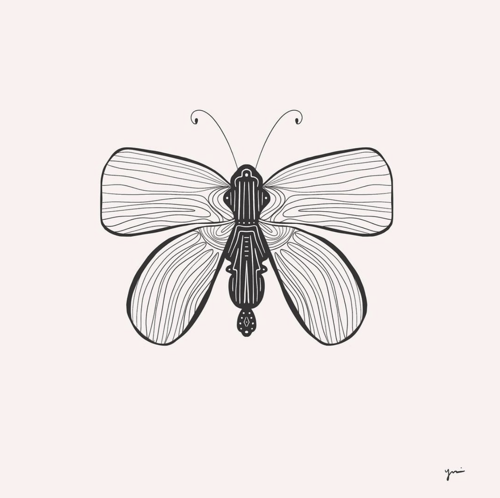 Instagram user   @sfchicky   shows how you can use your own patterns to make great butterfly line drawings.