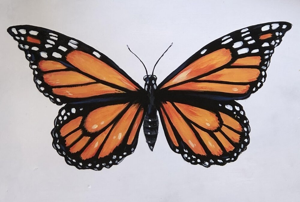 A painted monarch butterfly by Skillshare instructor Bonnie Lecat.