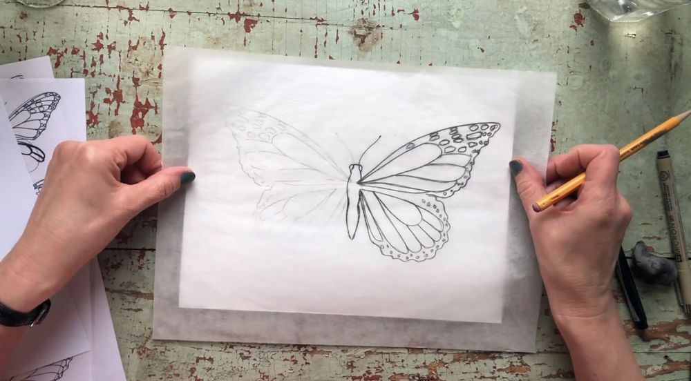 Do the same on the other side to complete your butterfly drawing.