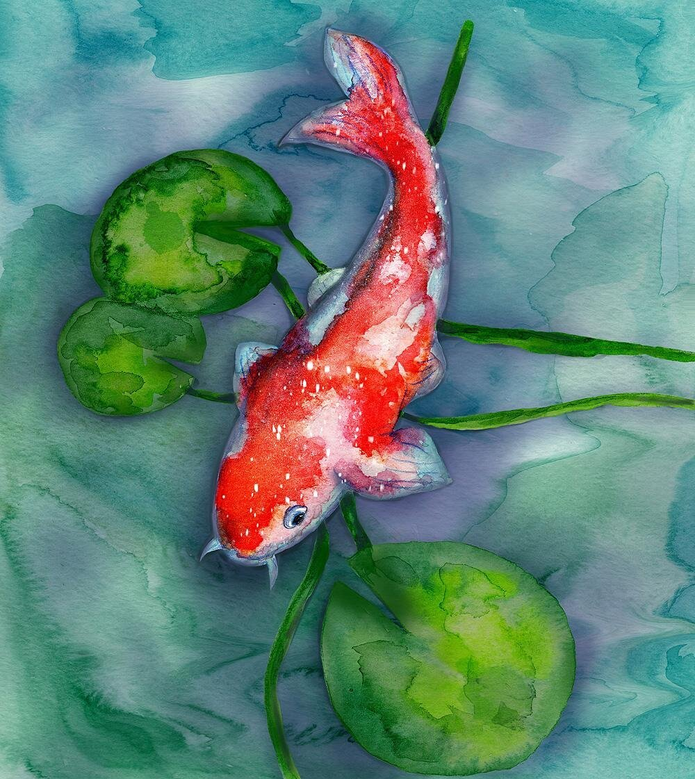 Procreate Koi Fish by Stephanie B.