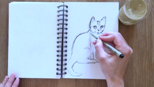 """A drawing notebook example from Skillshare course """"Animal study: drawing cats"""""""