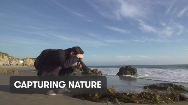 Get up close and personal with nature and capture beautiful images.