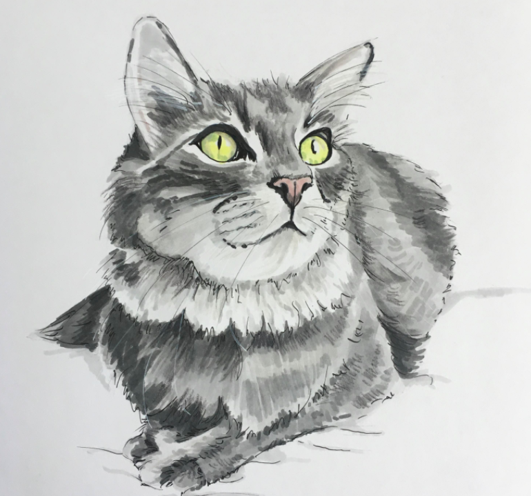 Morgan Swank finished her cat portrait by adding details with markers.