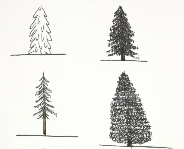 When it comes to pine tree drawings, options for creative expression abound!
