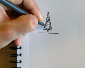 Outline your pine tree drawing to complete your work.