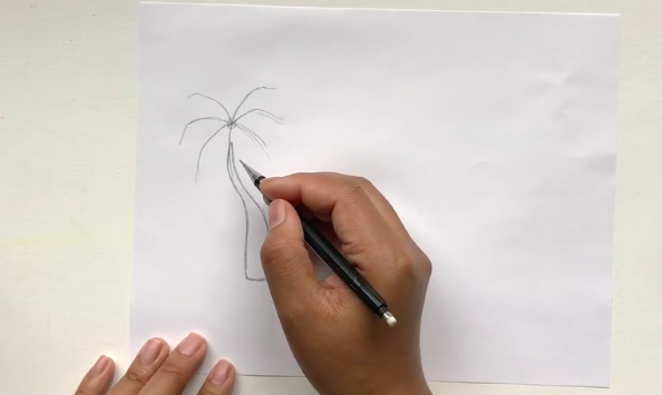 It's time to begin drawing your palm tree's leaves.