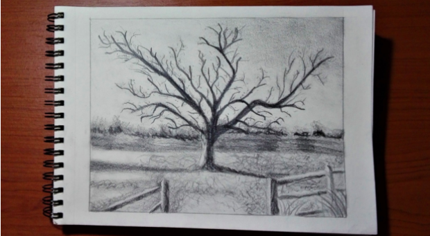 Drawing a landscape, either from real life or a photo, can help you learn how to recreate a realistic scene.