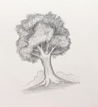 This simple tree from Skillshare instructor Emma Smith showcases shading techniques.