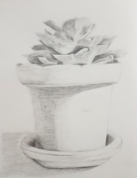 Sometimes simple shading is all you need in a still life.