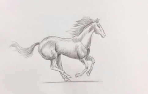 With step-by-step instructions and simple shapes, Emma Smith shows how even beginners can draw this galloping horse.
