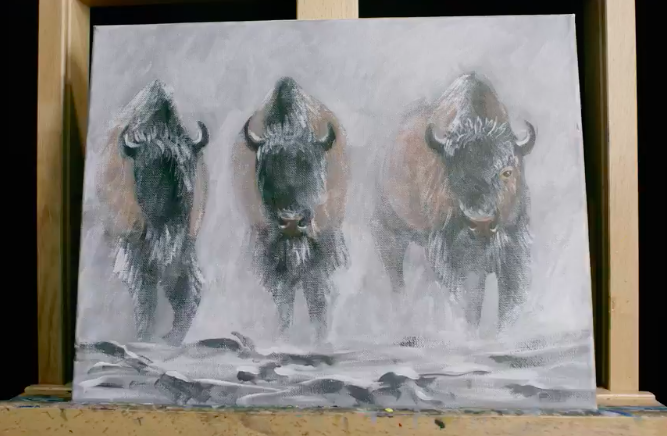 These bison look great on canvas!
