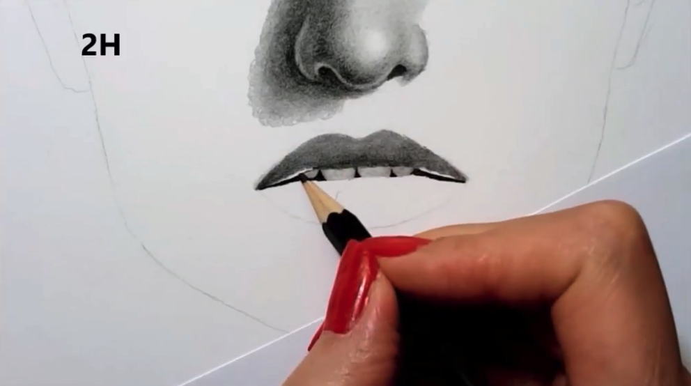 Using different types of pencils will help you to create the realistic look that you're after.