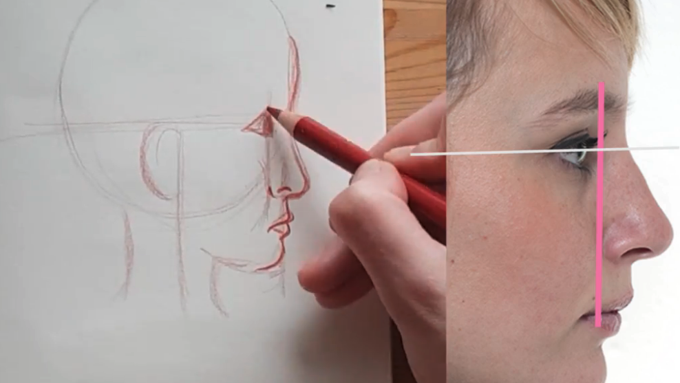 Make sure that your eyes, nose, and mouth are all aligned to keep your profile in proportion.