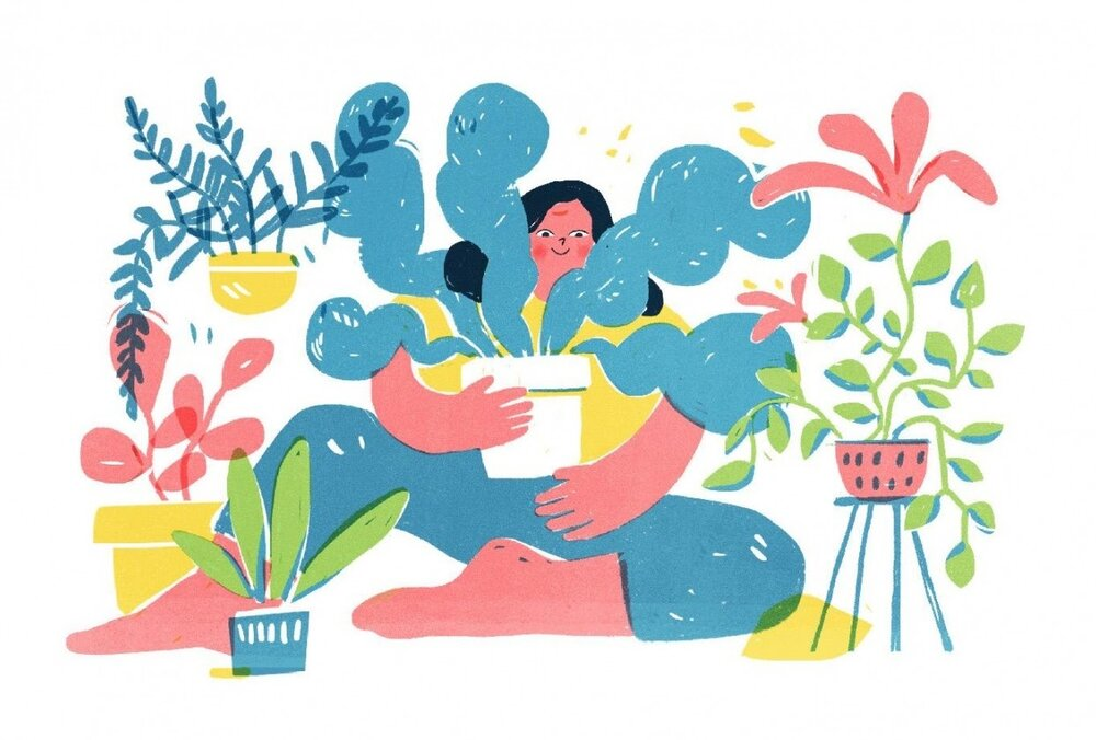 Skillshare student Katia Gaigalova chose to set her editorial illustration brief around the topic of taking care of plants.
