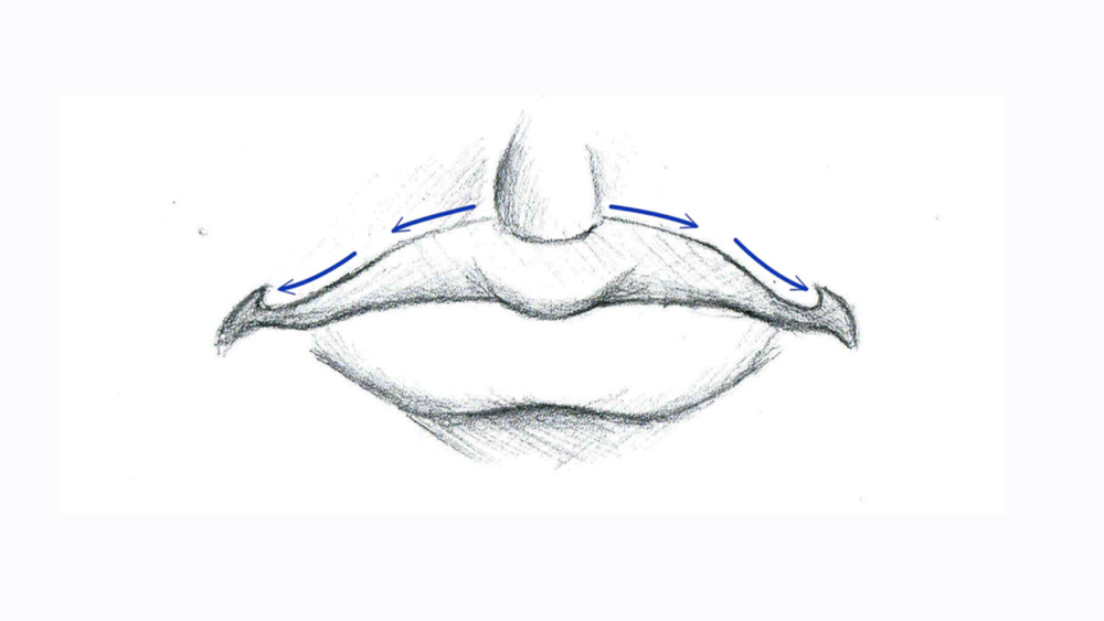 The upper lip line is known as the Cupid's bow.
