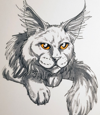This maine coon has furry eyes and bright, yellow eyes that make them come to life!
